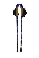 Карбоновые палки для скандинавской ходьбы Ergoforce PRO 0680