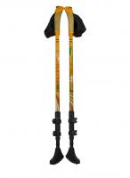 Карбоновые палки для скандинавской ходьбы Ergoforce PRO 0679